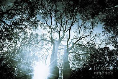 Dark Blue Spooky Trees Art Print