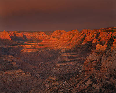 Photograph - Dark Canyon Wilderness by Leland D Howard
