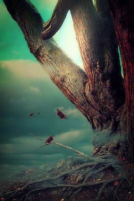 Tree Roots Digital Art - Dark Enchantment by Christine Lake