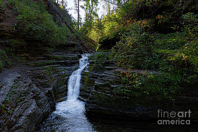 Photograph - Dark Falls by Steve Triplett