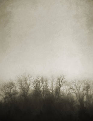 Sepia Tone Photograph - Dark Foggy Wood by Scott Norris