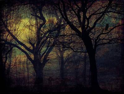 Dark Forest Art Print by Cocoparisienne