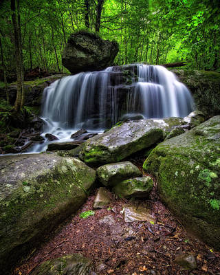 Photograph - Dark Forest Falls by Alan Raasch