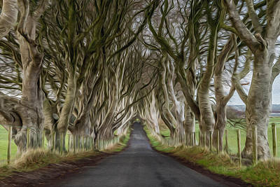 Digital Art - Dark Hedges by Matt Malloy