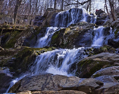 Photograph - Dark Hollow Falls by B Wayne Mullins