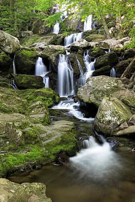 Photograph - Dark Hollow Falls Cascades by Jemmy Archer