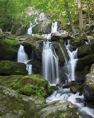 Photograph - Dark Hollow Falls by Jemmy Archer