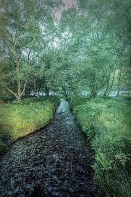 Photograph - Dark Irish Stream In Misty Greens by Debra and Dave Vanderlaan