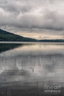 Photograph - Lake In Acadia by Patricia Hofmeester