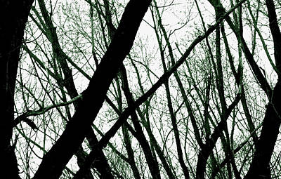 Dark Limbs Art Print