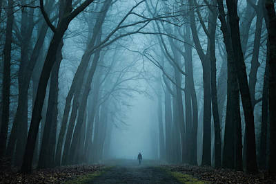 Winter Trees Photograph - Dark Magic by Martin Podt