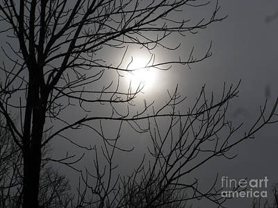 Photograph - Dark Noon by Melinda Dare Benfield