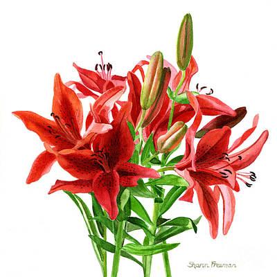 Watercolor Lily Painting - Dark Orange Lilies by Sharon Freeman