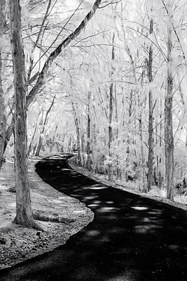 Dark Path Into The Light. Art Print by Sean Davey