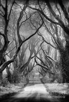 Photograph - Dark by Pawel Klarecki