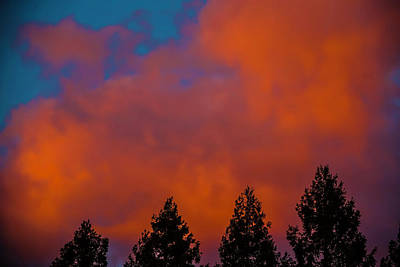 Photograph - Dark Pink Clouds by Garry Gay