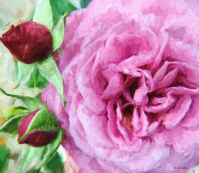 Painting - Dark Pink Rose 4 by Cathy Jourdan