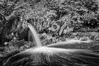 Photograph - Dark Pool In Black And White by Debra and Dave Vanderlaan