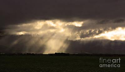 Photograph - Dark Rays by Nareeta Martin