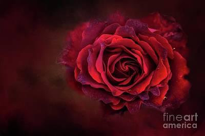 Mixed Media - Dark Red by Eva Lechner