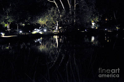 Photograph - Dark Reflections by Clayton Bruster
