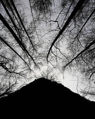 Photograph - Dark Shadows by Bob Cournoyer
