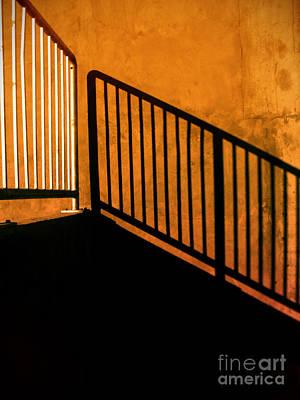 Photograph - Dark Shadows by Tara Turner