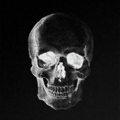 Mixed Media - Dark Skull by Anton Kalinichev
