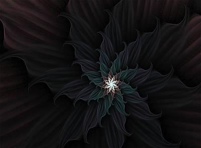 Digital Art - Dark Star Flower by Barbara A Lane
