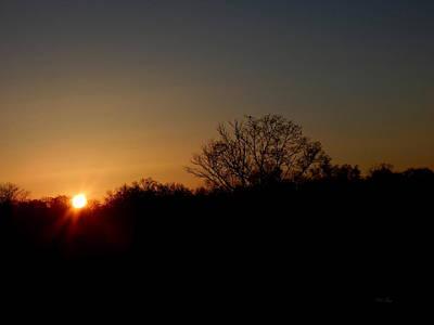 Photograph - Dark Sunrise by Wild Thing