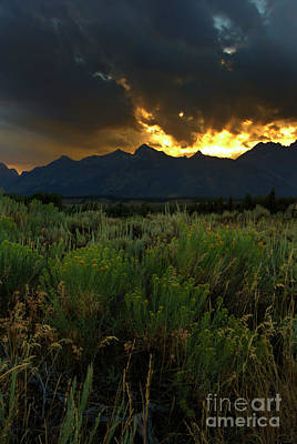 Photograph - Dark Sunset by Steve Triplett
