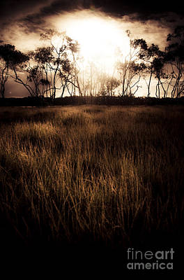 Pasture Scenes Photograph - Dark Wetland Sunset Scene by Jorgo Photography - Wall Art Gallery