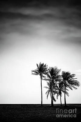 Photograph - Dark Winds Rising by Evelina Kremsdorf