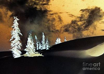 Photograph - Dark Winter by Frank Townsley