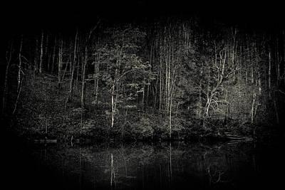 Virginia Photograph - Darken Woods by Shane Holsclaw