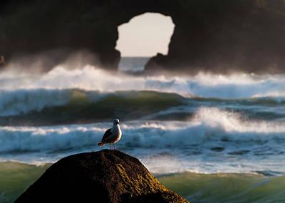 Photograph - Darkening Deep by Robert Potts