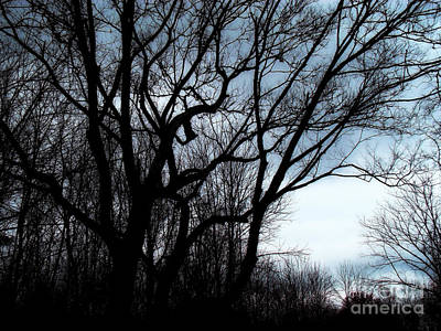 Photograph - Darkness Approaches by Sue Melvin