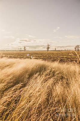 Darling Downs Rural Field Art Print by Jorgo Photography - Wall Art Gallery