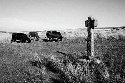 Photograph - Dartmoor Cross IIi by Helen Northcott