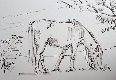 Drawing - Dartmoor Horse Grazing Sketch by Mike Jory
