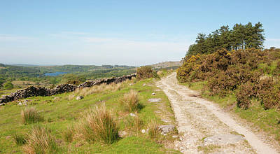 Photograph - Dartmoor In The Sun II by Helen Northcott