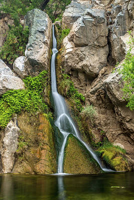 Panamint Valley Photograph - Darwin Falls Death Valley by Peter Tellone