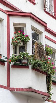 Fleetwood Mac - Das Haus der Pflanzenfrau by Teresa Mucha