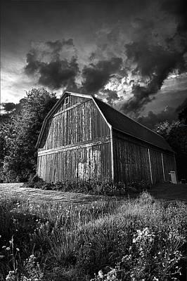 Natur Photograph - Dauntless by Phil Koch