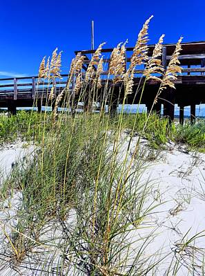 Photograph - Dauphin Island Blue by JC Findley