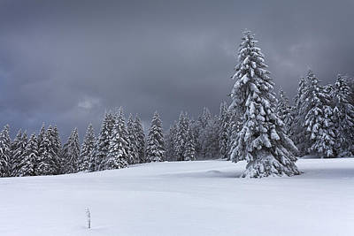 Switzerland Photograph - David And Goliath by Dominique Dubied