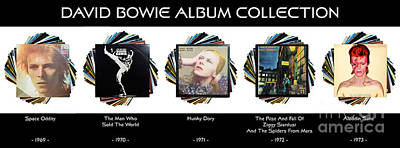 Photograph - David Bowie Album Collection by Wendy Wilton