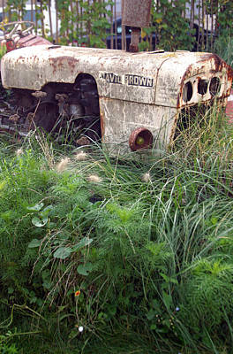 David Brown Grown Art Print by Jez C Self