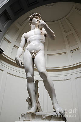 Michelangelo Photograph - David By Michelangelo by Edward Fielding