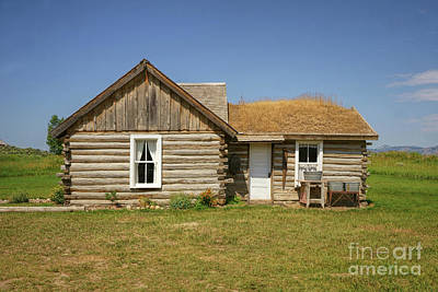 Photograph - Davis Cabin by Roxie Crouch